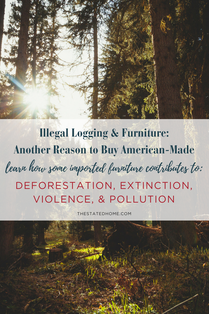 Illegal logging accounts for 10-30 percent of all wood used in furniture and flooring. It contributes to deforestation, extinction, violence, and pollution. Read on why it's so important to buy American-made furniture made with SFC certified lumber.