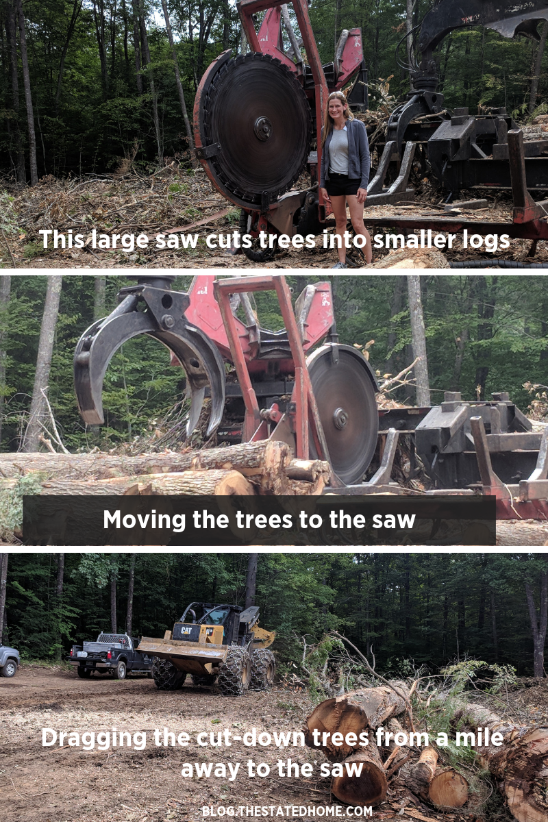 Sustainable Forestry In Action | The Stated Home
