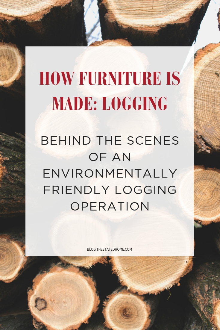 Learn how responsibly managed forests are logged for furniture manufacturing.