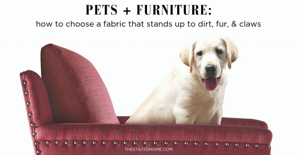 Pet Friendly Furniture The Stated Home