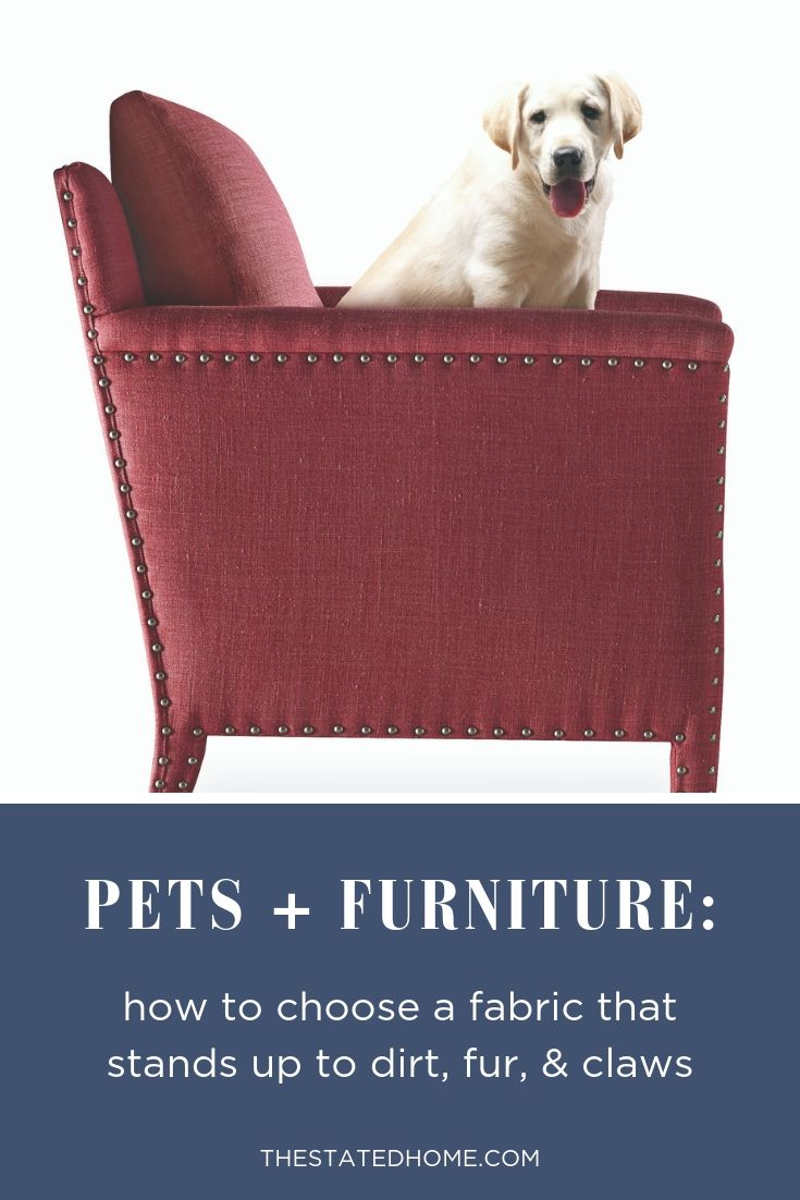Read our tips on how to shop for furniture that will stand up to your pets - and still look stylish!